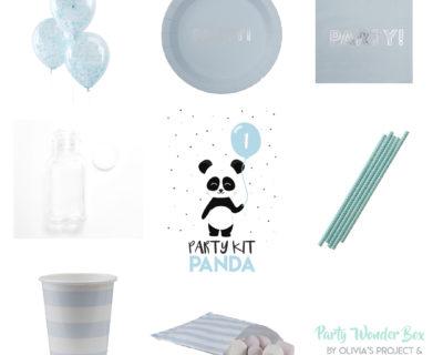 Party Wonder Box baby panda celeste